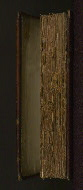 W.437, Fore-edge